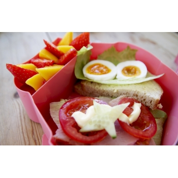 Pink Owl Lunch Box