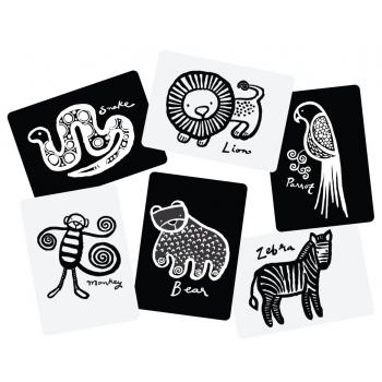 Jungle Art Cards